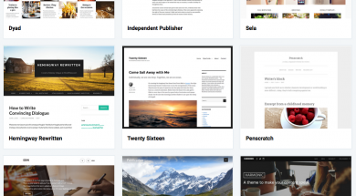 Wordpress thema pagina